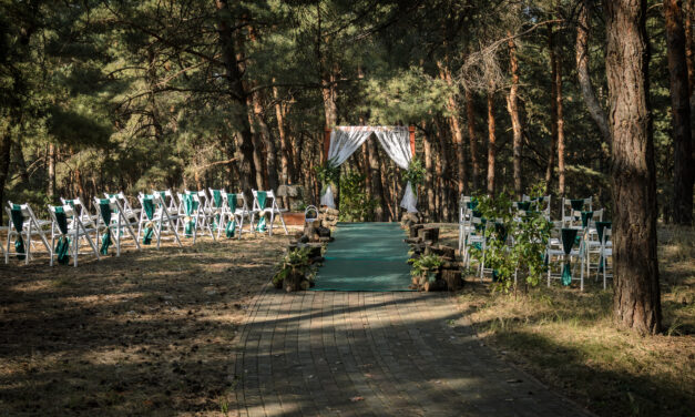 Forest wedding: how to arrange a romantic wedding in the woods